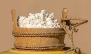 sveži sitan sir